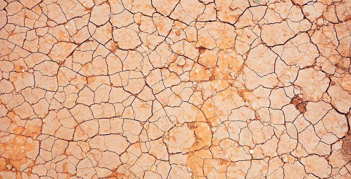Ceramides and why they're important for dry skin