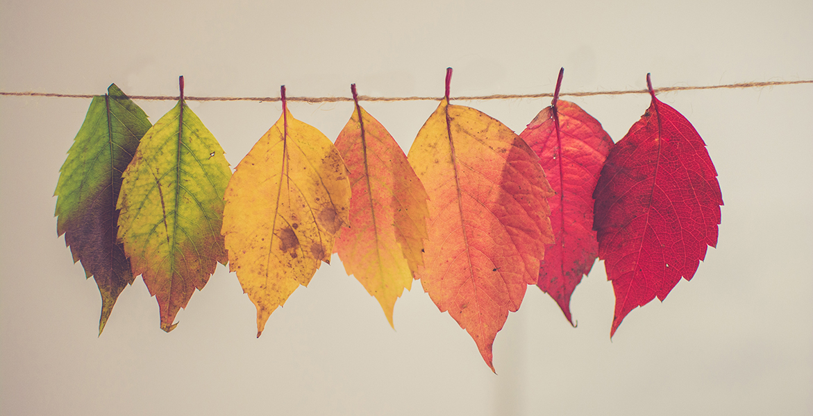 How seasonal changes affect your skin